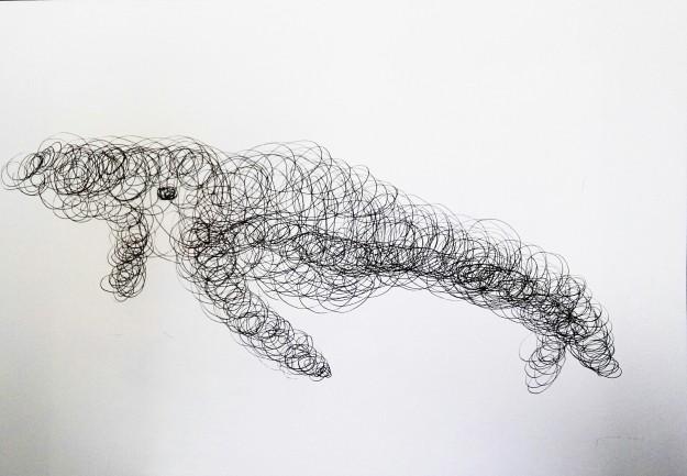 Líneas cétaceas, tinta china sobre papel, 48 x 33.1 2016